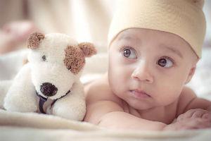 Blije doos aanvragen baby met knuffel